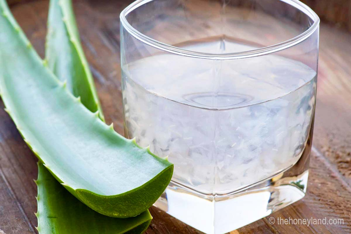 Aloe vera benefici documentati dell'Aloe fresca