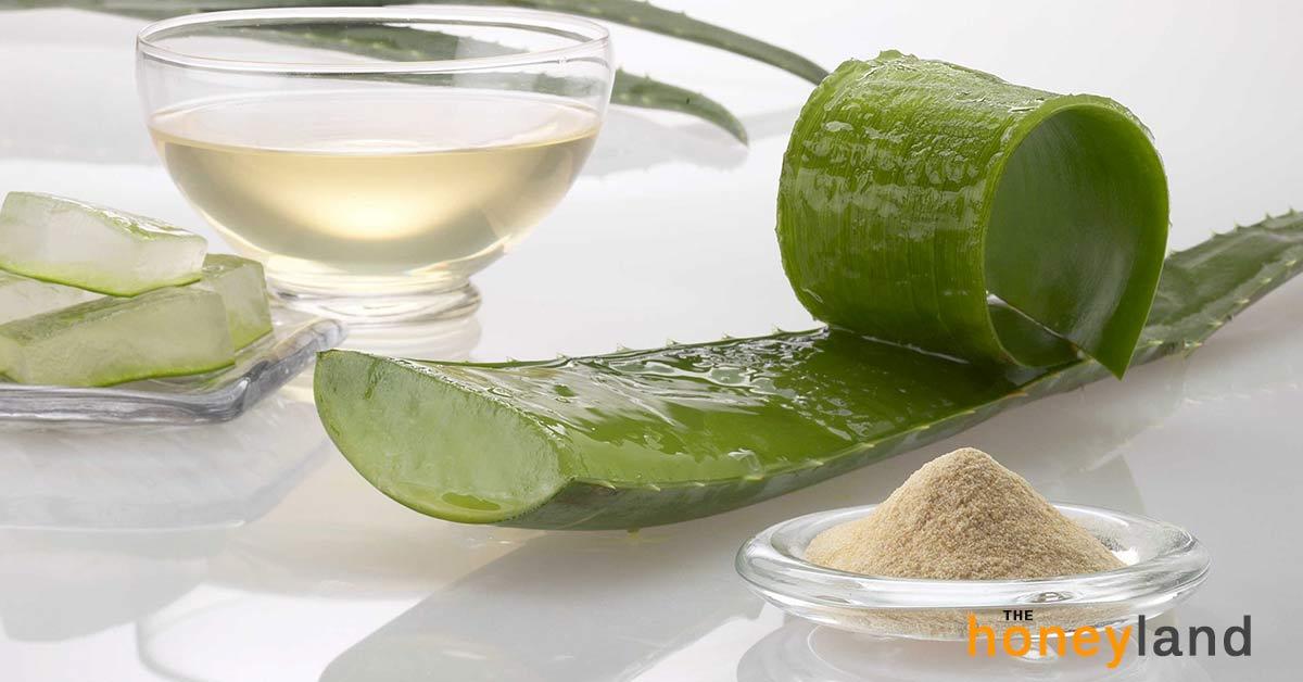 Migliore Aloe Vera da bere: 7 passi per riconoscere l'Aloe di qualità