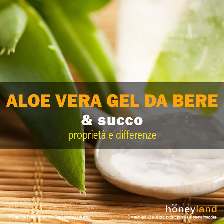Aloe vera gel da bere benefici differenze